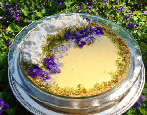 Lime Pie with Violets